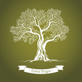 Drzewo oliwne. Oliwa z oliwek. Wektorowy drzewo oliwne. Dla etykietek, paczka. ilustracji