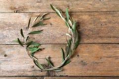 Drzewo oliwne wianek zdjęcie stock