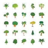 Drzewo Płaskie Wektorowe ikony Ustawiać Obraz Royalty Free