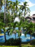 Drzewo palmy domowy dach pokrywać strzechą Zdjęcie Royalty Free
