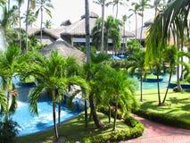 Drzewo palmy domowy dach pokrywać strzechą Obrazy Stock