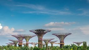 Drzewo park jest punktem zwrotnym Singapur przy dniem pejzaż miejski jest kolorowym przedstawieniem zaświecać przy Marina zatoki  Obraz Royalty Free