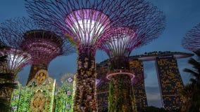 Drzewo park jest punktem zwrotnym Singapur przy nocą pejzaż miejski jest kolorowym przedstawieniem zaświecać przy Marina zatoki p Fotografia Stock