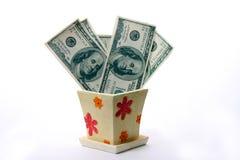 drzewo pieniądze Obraz Stock