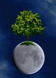 drzewo planety Obrazy Royalty Free