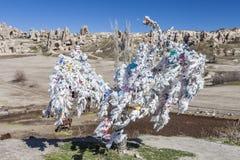 Drzewo pomyślność przed górami Capadocia Zdjęcie Stock