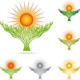 Drzewo, roślina, natura, słońce, barwił, logo ilustracja wektor