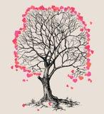 Drzewo serca Zdjęcia Stock