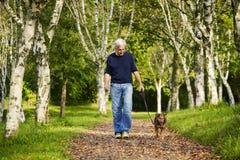 Drzewo sposobu mężczyzna lasowy pies Obrazy Stock