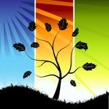 drzewo sylwetki ilustracja wektor