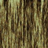 drzewo tekstury szczekać Zdjęcie Stock