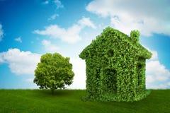Drzewo w ecologic żywym pojęciu i - 3d rendering Obrazy Stock