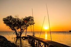 Drzewo w formie serca z drewno mostem na morzu przy zmierzchem w Bangpu, w Tajlandia Zdjęcie Stock