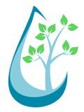 Drzewo Wśrodku Raindrop Obraz Royalty Free