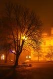 Drzewo w świetle lampionu w mgle Fotografia Royalty Free