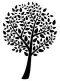 drzewo wektor Obraz Royalty Free