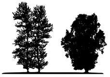 Drzewo (wektor) obraz royalty free