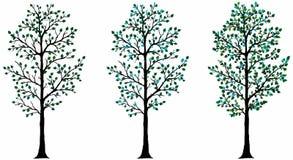 drzewo wektor Obrazy Stock
