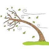 drzewo wystrzelony wiatr ilustracji