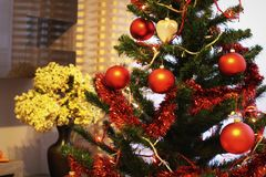 Drzewo z bąblami Zdjęcia Stock
