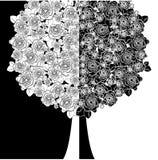 Drzewo z bielu i czerni kwiatami Zdjęcie Stock