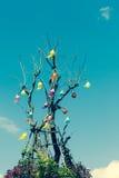 Drzewo z culorful lampionem Zdjęcia Stock