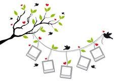Drzewo z fotografii ramami i ptakami, wektor royalty ilustracja