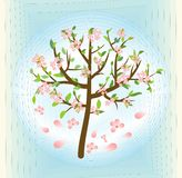 Drzewo z menchiami kwitnie, wiosna temat na abstrakcjonistycznym błękitnym tle, wektorowy projekta element Obrazy Stock