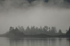 Drzewo zakrywająca wyspa Zdjęcie Royalty Free