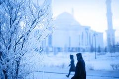 Drzewo zakrywający z hoarfrost na zima ranku i ludziach passi Obraz Royalty Free