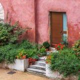 Drzwi i rośliny obraz stock