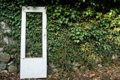 Drzwi przeciw porosłej ścianie Zdjęcia Royalty Free