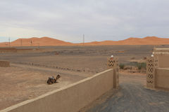 Drzwi pustynia Zdjęcie Royalty Free