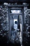drzwi ruina Fotografia Royalty Free