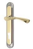 Drzwiowa rękojeść z dziurą dla keyhole Zdjęcia Royalty Free