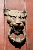 Drzwiowego knocker lew kształtujący Obrazy Royalty Free
