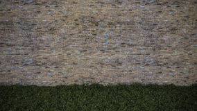 3Ds brick wall. 3ds rendered image of old brown brick wall and grasses field Royalty Free Stock Photos