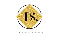 DS Letter Logo with Golden Foil Texture. Stock Photos
