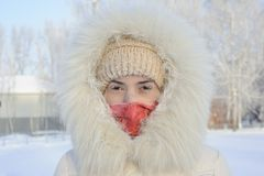 The girl in a fur coat has frozen in the winter Royalty Free Stock Photos