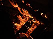 Wood campfire burning in the dark. stock photography