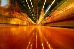 Dschungel-Aufenthaltsraum-lautes Summen Lizenzfreie Stockbilder
