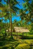 Dschungel-Hütten gemacht vom Nipa lizenzfreie stockfotos