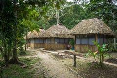 Dschungel-Kabinen Stockbilder