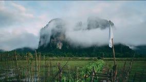 Dschungel-Laos-Gebirgsnatur bewölkt Wald stock video footage