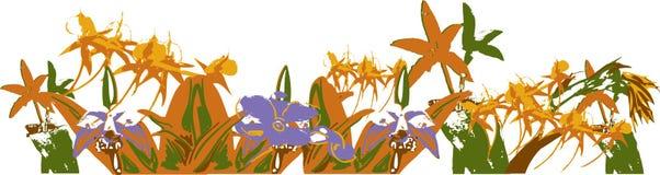 Dschungel mit Blumen lizenzfreie abbildung