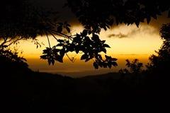 Dschungel-Sonnenuntergang lizenzfreies stockfoto