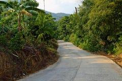 Dschungel-Straße Stockfotos