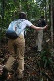 Dschungel-Trekking Lizenzfreie Stockbilder