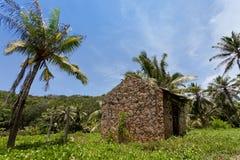 Dschungel von La Digue, Seychellen Stockbild