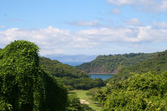 Dschungel zum Golf zu spielen stockbilder
